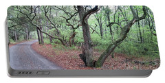 Portable Battery Charger featuring the photograph Live Oak Forest by Liza Eckardt