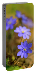 Portable Battery Charger featuring the photograph Liverworts In The Afternoon Sunlight by Jaroslaw Blaminsky
