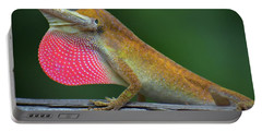 Lizardry Portable Battery Charger