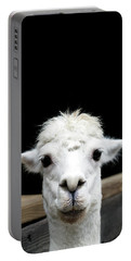 Llama Portable Battery Charger