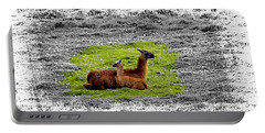 Llamas At Ingapirca Portable Battery Charger