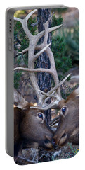 Locking Horns - Well Antlers Portable Battery Charger