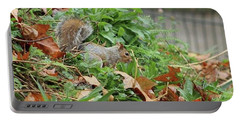 London Oct 1st 2016 #squirrel #animal Portable Battery Charger