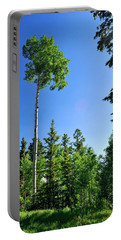 Lone Aspen Portable Battery Charger