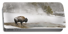 Portable Battery Charger featuring the photograph Bison Keeping Warm by Gary Lengyel