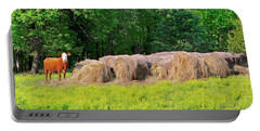 Lone Cow Guard, Smith Mountain Lake Portable Battery Charger