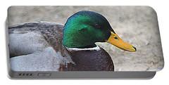 Lone Mallard Duck Portable Battery Charger