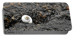 Lone Seashell Portable Battery Charger