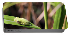 Lone Tree Frog Portable Battery Charger