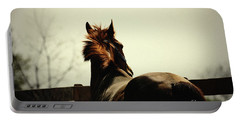Lonely Horse Portable Battery Charger