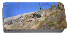 Portable Battery Charger featuring the photograph Lonely Leopard by Al Powell Photography USA