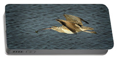 Long-billed Curlew In Flight Portable Battery Charger