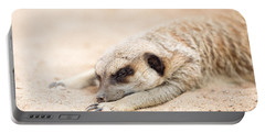 Long Day In Meerkat Village Portable Battery Charger