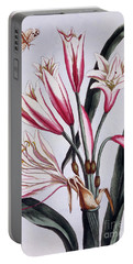 Long Leaved Amaryllis Portable Battery Charger
