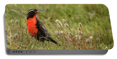 Long-tailed Meadowlark Portable Battery Charger by Bruce J Robinson
