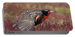 Long-tailed Meadowlark Portable Battery Charger