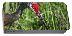 Look Down Crane Portable Battery Charger