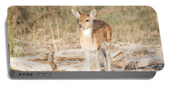 Portable Battery Charger featuring the photograph Looking For Mum by Pravine Chester