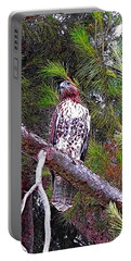 Looking For Prey - Red Tailed Hawk Portable Battery Charger by Glenn McCarthy Art and Photography