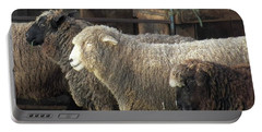 Looking For The Shepherd Portable Battery Charger