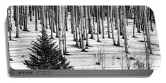 Looking Through The Aspen Black And White Portable Battery Charger
