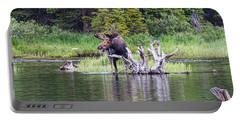 Loose Moose Portable Battery Charger
