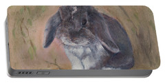 Lop Eared Rabbit- Socks Portable Battery Charger