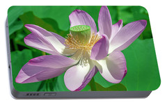 Portable Battery Charger featuring the photograph Lotus--fading II Dl0080 by Gerry Gantt