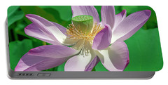Lotus--fading II Dl0080 Portable Battery Charger
