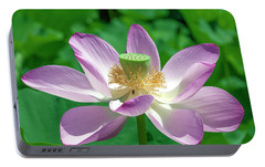 Portable Battery Charger featuring the photograph Lotus--fading IIi Dl0081 by Gerry Gantt