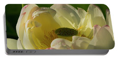 Portable Battery Charger featuring the photograph Lotus Flower 4 by Buddy Scott