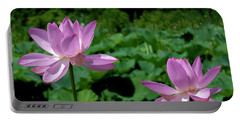 Lotus--sisters II Dl0083 Portable Battery Charger