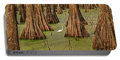 Louisiana Cajun Swamp Portable Battery Charger