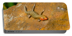 Lounging Lizard Portable Battery Charger