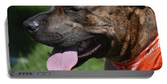 Lovable Pitbull Tired From Plating With Friends Portable Battery Charger