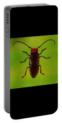 Love Bug Portable Battery Charger by Danielle R T Haney