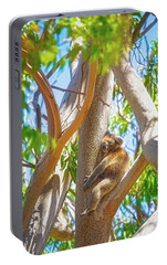 Portable Battery Charger featuring the photograph Love My Tree, Yanchep National Park by Dave Catley