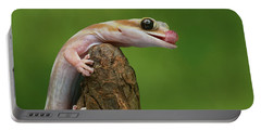 Portable Battery Charger featuring the photograph Lovely Water - Velvet Gecko by Nikolyn McDonald