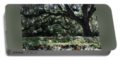 Portable Battery Charger featuring the photograph Low Country Series I by Suzanne Gaff