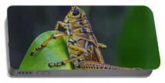 Lubber Grasshopper Portable Battery Charger
