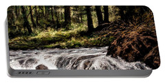 Lucia Falls In July Portable Battery Charger