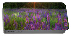 Lupine Lumination Square Portable Battery Charger