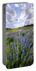 Lupine Pass Portable Battery Charger