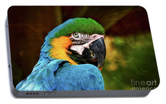 Portable Battery Charger featuring the photograph Macaw Portrait by Kathy Baccari