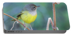 Macgillivray's Warbler 5997-092517-1 Portable Battery Charger