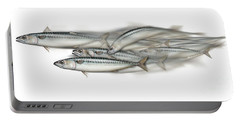Mackerel School Of Fish - Scomber - Nautical Art - Seafood Art - Marine Art -game Fish Portable Battery Charger