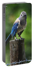 Mad Bird Portable Battery Charger