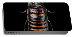 Madagascar Hissing Cockroach Portable Battery Charger