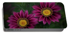 Portable Battery Charger featuring the photograph Magenta African Daisies by David and Carol Kelly