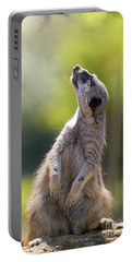 Magical Meerkat Portable Battery Charger by Jane Rix